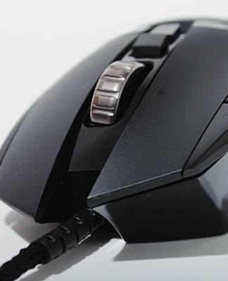 Image of the best mouse in the world