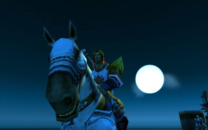Image of a Paladin in wow