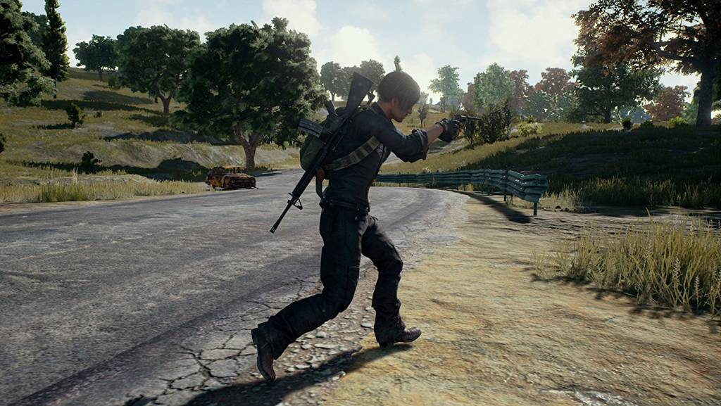 Screenshot from Playerunknown's battleground