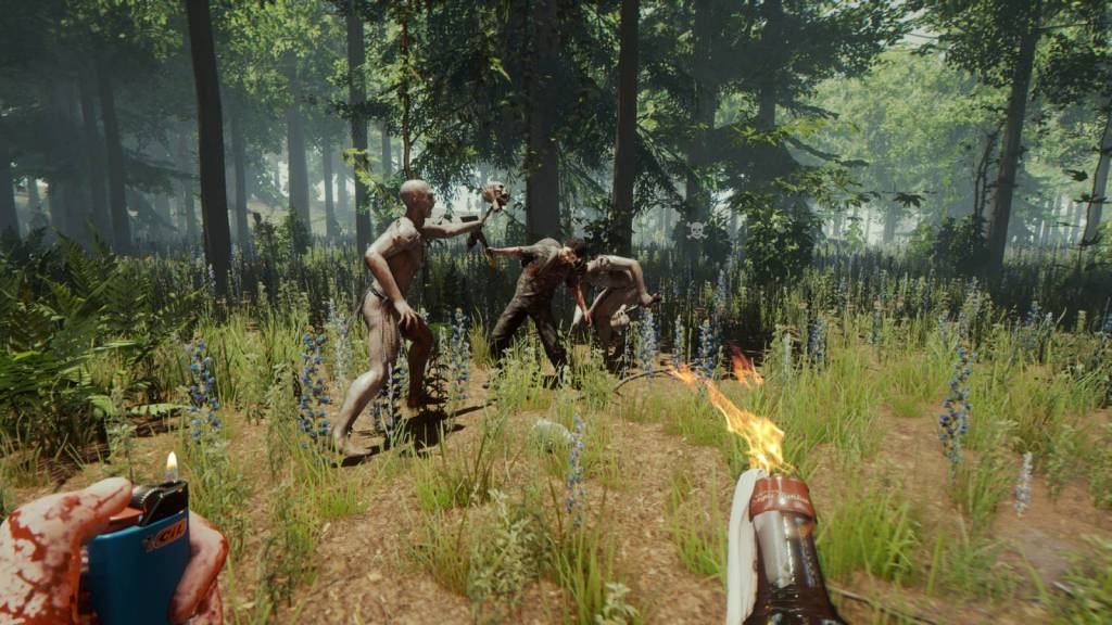 Screenshot from the Forest video game